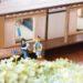 日本家屋風ドールハウス